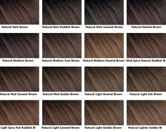 Prev Next Brown Hair Color Chart