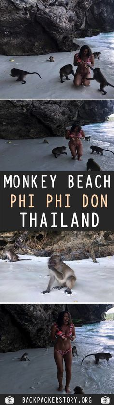 Monkey Beach is located on the southwestern side of Tonsai Bay, about from the jetty off of Ko Phi Phi Don, Thailand. Travel And Tourism, Us Travel, Travel Plan, Country Maps, Travel Guides, Travel Tips, Go Outdoors, Travel Articles, Outdoor Camping