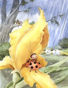 'Tales From Lofoten' by Jan Andre Kallestad. This is a story about very small ladybug who lives in an iris.