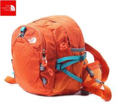 the north face dynamic hiking outdoor multi style bag/waist bag