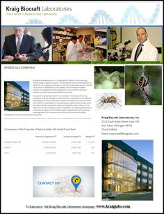 To learn more, visit Kraig Biocraft Laboratories homepage: www.kraiglabs.com Spider Silk, State Street, Nature, Naturaleza, Off Grid, Natural, Mother Nature, Scenery