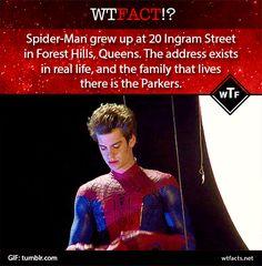 Spiderman fact