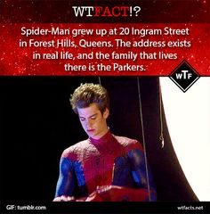 Spiderman fact