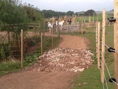 Paddock Paradise / equine track system | Total Contact Equine ...
