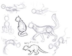 Cat Poses by Phails.deviantart.com on @deviantART