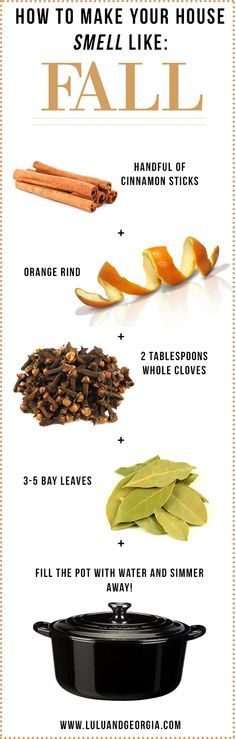 How To Make Your House Smell Like FALL! ~cinnamon sticks, orange rind, whole cloves, and bay leaves