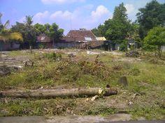 Tanah Dijual Kaliurang Jogja di Dayu Km 8 Ngaglik Sleman | Tanah Perumahan Jogja | Rumah Dijual Yogyakarta | Tanah Dijual Jogja | Kost dan Gudang Yogyakarta