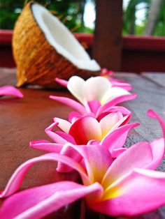 plumeria & coconut. Hoping for this for my honeymoon!