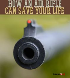 Get to know the advantage of having an air rifle as a survival strategy | #SurvivalLife www.SurvivalLife.com