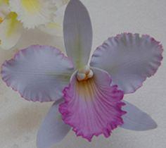 gumpaste purple cattleya by tulip27f, via Flickr