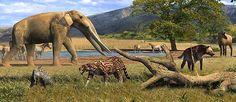 Resultado de imagen para animales imaginarios dibujos