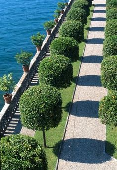 traditional Italian gardens rely on hedges and topiaries of all sorts to impart rigidity and express symmetry. Despite this grand example, yes, this approach can easily be adapted to the smallest lot.