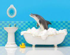 bathroom decor dolphin art kids bathroom decor by WildLifePrints, $20.00