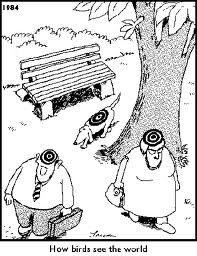 The Far Side comics by Gary Larson.