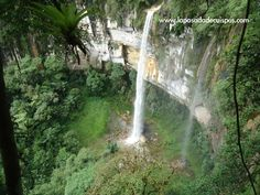 Wiki yumbilla waterfalls cuispes - Yumbilla Falls - Wikipedia, the free encyclopedia