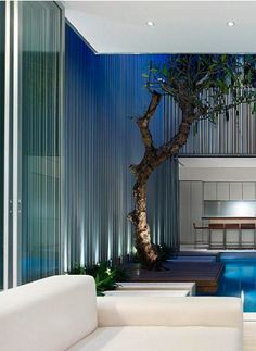 Courtyard Pool,  the 55 Blair Road private residence in Singapore by Ong & Ong _
