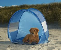 Guardian Gear #Beach #Cabanas are pet sun tents that set up in seconds to keep #pets shaded and cool in the hot sun.