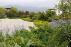 Jardin Cachagua