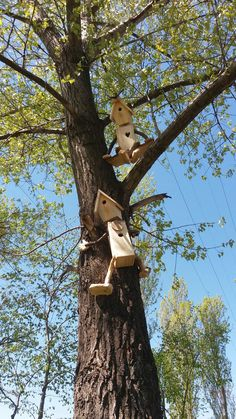Man-in-the-tree birdhouse