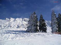 Impressionen aus dem Allgäu. Winterurlaub in unberührter Natur rund um Bad Hindelang. Langlauf, Schneewandern, alpiner Skisport. Eine breite Palette erwartet Sie in Bad Hindelang. Das Kur- und Sporthotel ist Ausgangspunkt für viele Schneewanderungen. Wunderbarer Skiurlaub.