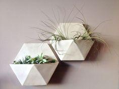 Modern and Elegant ceramic Vertical Wall Planter Pots Ideas Concrete Planters, Ceramic Planters, Planter Pots, Decorative Planters, Hanging Planters, Wall Planters, Air Plants, Indoor Plants, Indoor Gardening