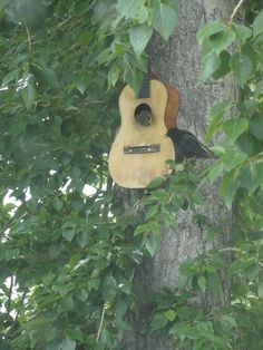 "Unique ""musical"" bird house :) #birdhouse #guitar"