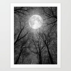 May It Be A Light (Dark Forest Moon)