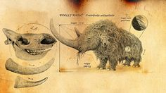 "Woolly rhino from ""The Ice Age Giants"" on BBC"