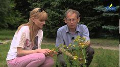 Ogród bez tajemnic ,, Rośliny lecznicze''