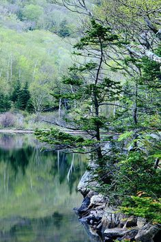 ✮ Profile Lake in Franconia Notch State Park, New Hampshire, White Mountains