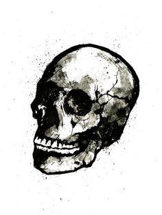 Skull by Matthew Dunn