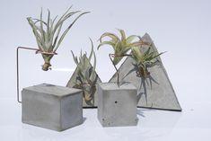 Concrete Air plant planters by PLANTRA
