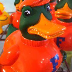 Gator rubber duck.