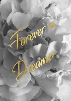Forever a dreamer.