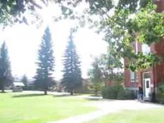 LCBI - HighSchool for Success !!!!!!! Great Places, Success, Backyard, World, Youtube, Plants, Pictures, The World, Photos