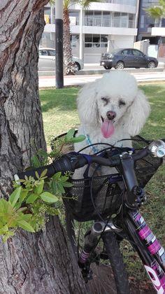 Siempre es mejor pedalear acompañad@