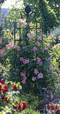 Belle Epoque obelisk with roses and clematis