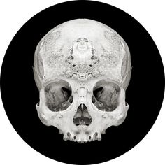 Artist David Orr uses mirrors to find symmetry in the macabre. Via Perfect Vessels.