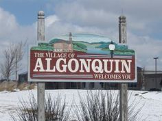 Visit the Algonquin Area Public Library District in Algonquin, Illinois located on 2600 Harnish Drive.