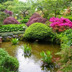 Feng Shui Garden Design Tips, Backyard Landscaping Ideas I would like a koi pond like this for my non-existent back yard.I would like a koi pond like this for my non-existent back yard. Japanese Garden Design, Chinese Garden, Japanese Gardens, Japanese Style, Jardin Feng Shui, Feng Shui Garden Design, Buchart Gardens, Concrete Patios, Pond Plants