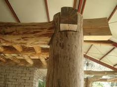 나무 기둥에 대한 이미지 검색결과
