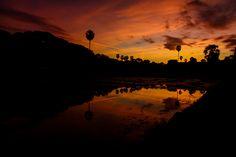 #angkorwat #SeeAngkorWatAndDie #angkorwattemples #visitangkorwat @sealadventures #cambodia #angkorwatarcheologicalpark #cambodge #exploreangkorwat #angkorwatt #voyage #angkorwattour #angkorwattuktukdriver #explorebeyondangkorwat #AngkorWat #angkorwatsunset #angkorwatsunrise #sunriseangkorwat #angkorwatcambodia #travel #asia #southeastasia #cambodia #siemreap #traveler #travelphoto #aventure #wanderlust #sealadventures #adventures