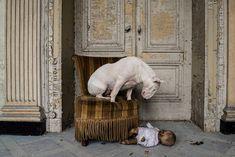 La photographeAlice van Kempen, passionnée d'urbex et de photographie,explore les lieux abandonnés à travers l'Europe en compagnie de sachienneClaire  Plus de découvertes sur Souterrain-Lyon.com
