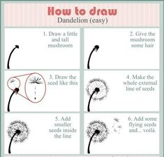 Flower Drawing How to draw: dandelion Dandelion Drawing, Dandelion Art, Plant Drawing, Painting & Drawing, Drawing Lessons, Drawing Tips, Art Lessons, Drawing Projects, Drawing Sketches