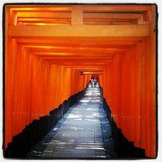 Voyage de noces, destination le Japon !