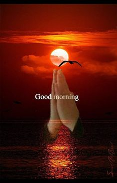 Morning Is A Perfect Time morning good morning morning quotes good morning… – BuzzTMZ Good Morning Clips, Good Morning Sister, Good Morning Saturday, Good Morning Prayer, Good Morning Sunshine, Good Morning Greetings, Good Morning Good Night, Morning Morning, Good Morning Picture Messages