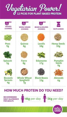 Plant-Based Protein Charts | Rebel Dietitian, Dana McDonald, RD