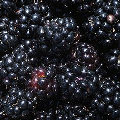 How to Prevent Colorectal Cancer Black Raspberries, Colon Cancer, Raspberry, Clean Eating, Fruit, Healthy, Food, Clean Meals, Eat Healthy