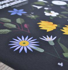 Burren Botanicals Print – Irish Design Shop Irish Design, County Clare, Design Shop, Botany, Wild Flowers, Planting Flowers, Giclee Print, Flora, Art Prints