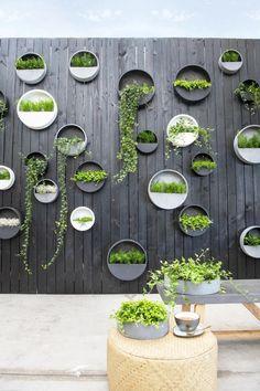 House Plants Decor, Plant Decor, Hanging Wall Planters, Outdoor Wall Planters, Best Indoor Hanging Plants, Garden Wall Planter, Vertical Garden Design, Garden Wall Designs, Plant Wall